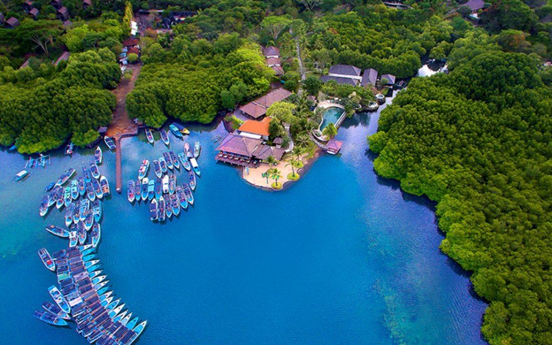 Pulau Menjangan, salah satu Spot Diving terindah di Dunia