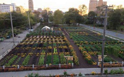 Agrihoods Tren Terbaru Milenial