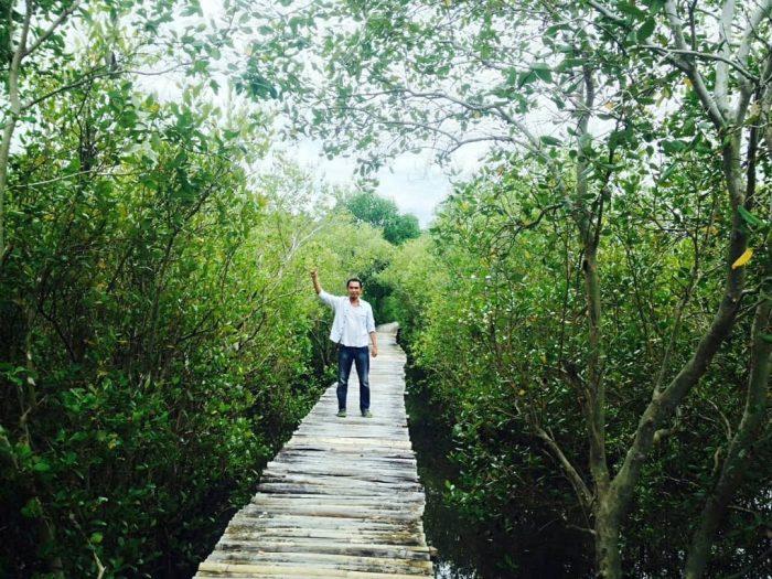 hutan mangrove magepanda