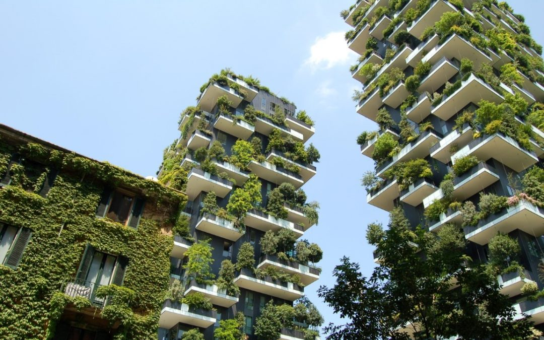 Liuzhou Forest City, Kota Hutan Pertama di Dunia