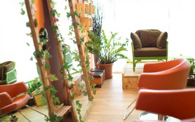 Salon Organic Glow Beauty Lounge