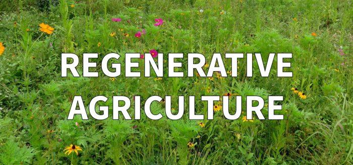 pertanian regeneratif